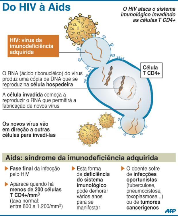 Do HIV à AIDS